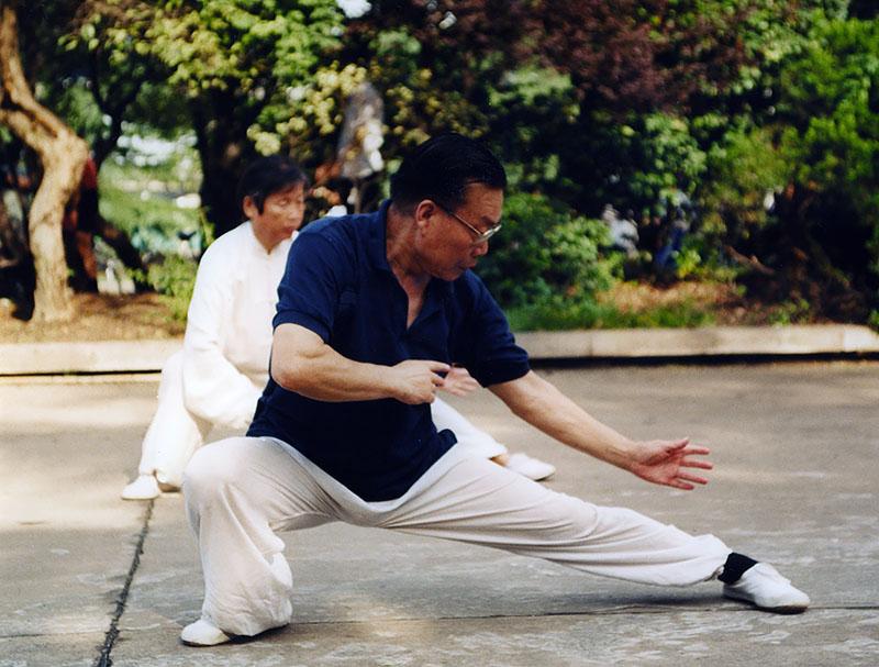 Li Li Qun 2